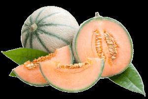 Cantaloupe half